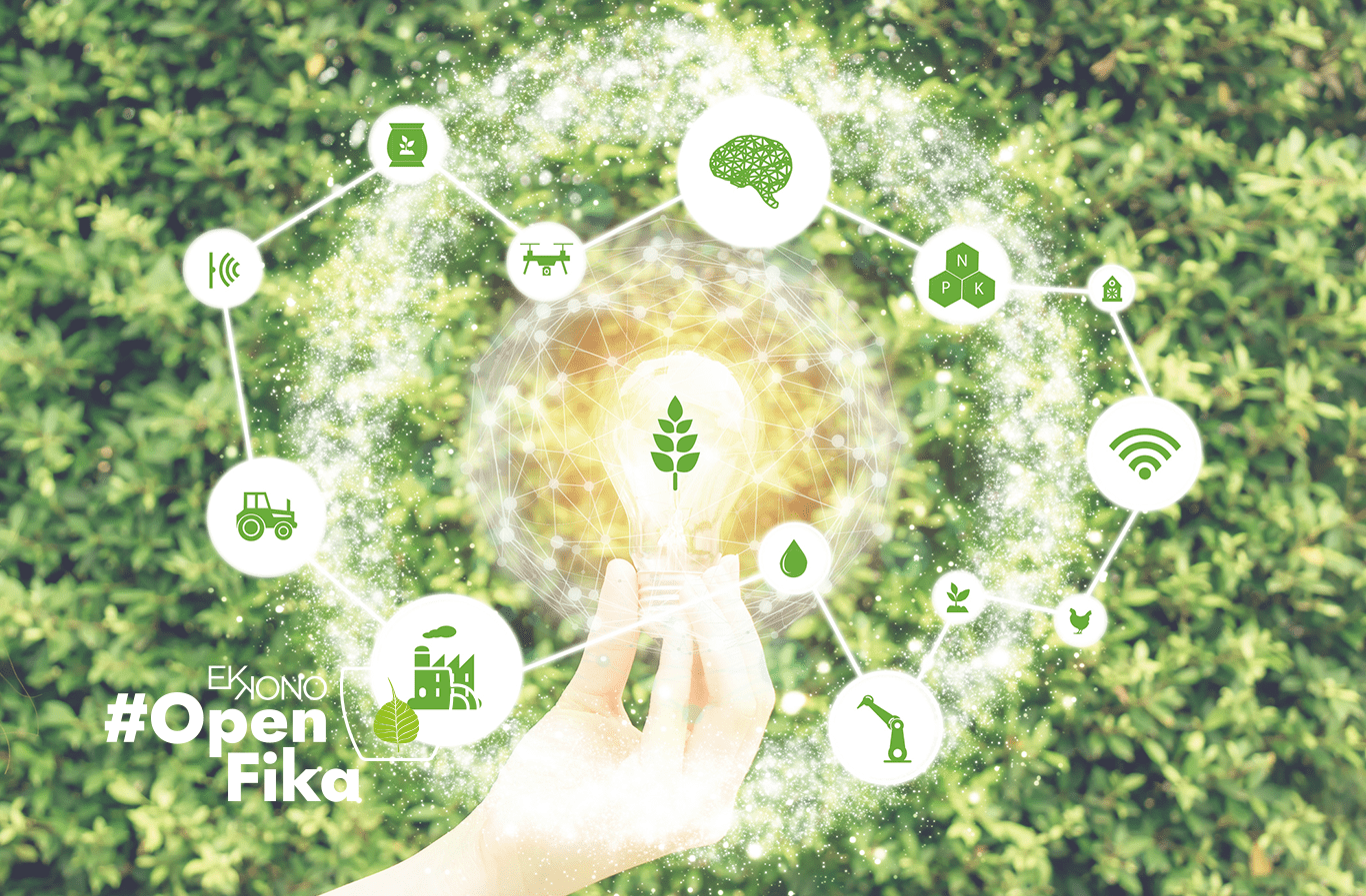 Sustainable and Smart IoT